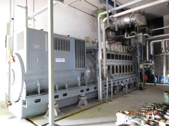 Fotos de Motor man con aceite vegetal de 2,7 mw y alternador hyundai 1